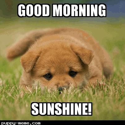 Mornin