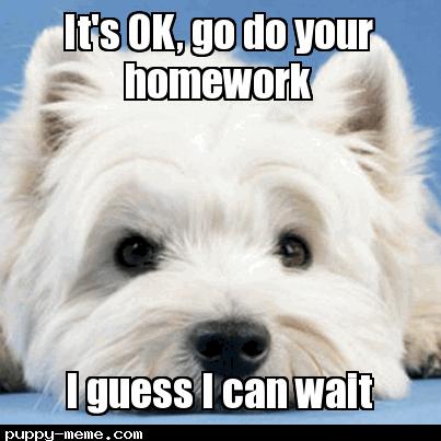 playing with me vs homework
