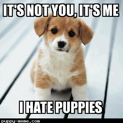 Puppy-love-hate