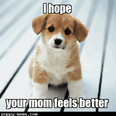 momma feel bettah