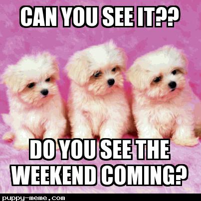 Do u see the weekend