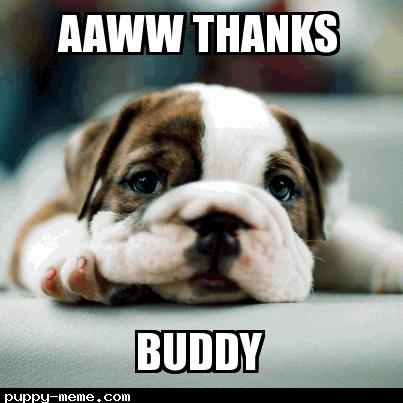 Buddy thanks