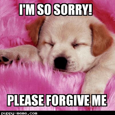 Me so sorry
