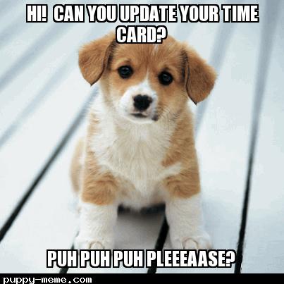 Cute Puppy Time Card