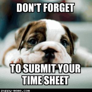Puppy timesheet