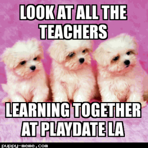 Playdate puppies
