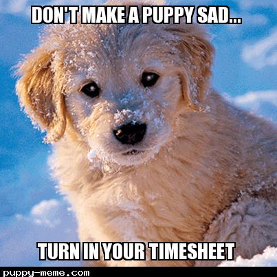 timesheet pup