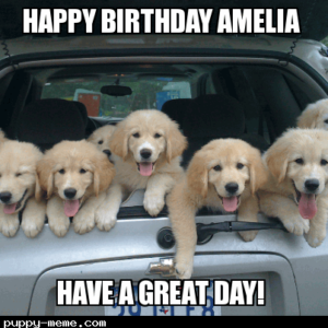 happy birthday amelia!