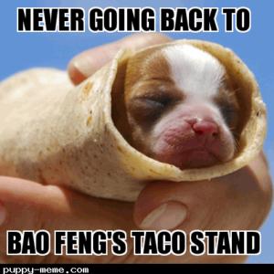 Puppy taco