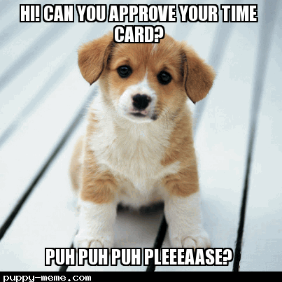 Time Card Pup