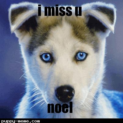I miss u noel