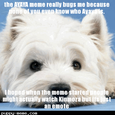 the AYAYA meme really bugs me because none of you even know who Ayaya is.