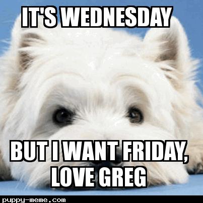 Want Friday