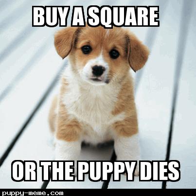 Puppy dies