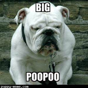 PooPoo