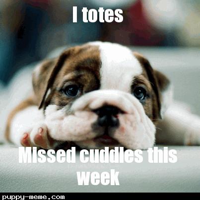 Missed cuddles