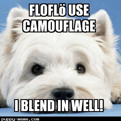 You befriended floflö