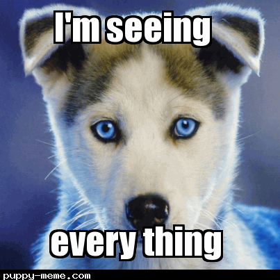 he has big blue eyes