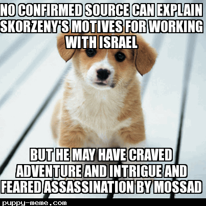 puppy-meme-dot-com